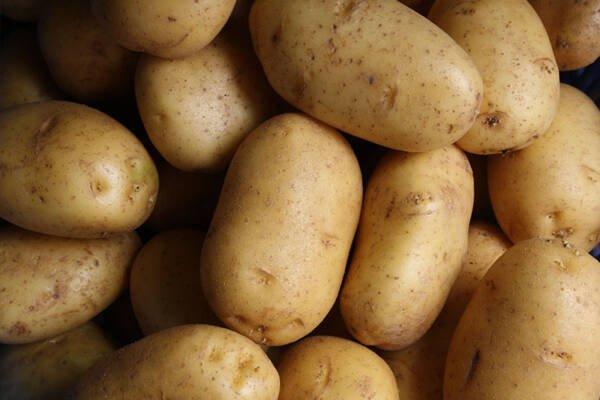 Bio Kartoffeln, festkochend, 2kg