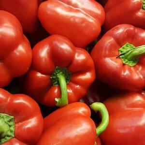 Paprika, 1 Stück