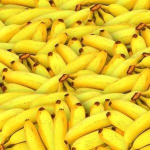 Bio Bananen, 1kg
