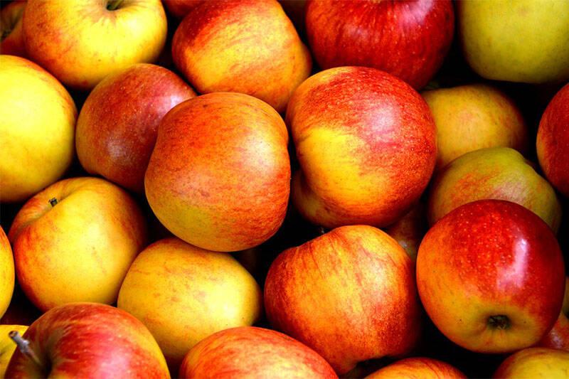 Bio Apfel (Topaz o.ä.), 1kg