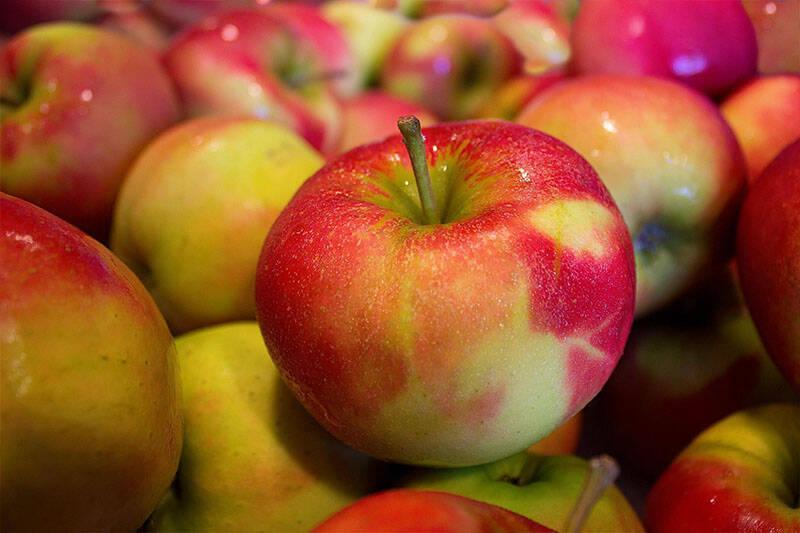 Apfel rot (Elstar, Delbar etc.), 1kg
