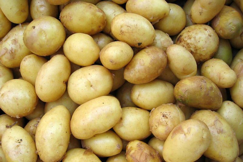 Bio Kartoffeln, mehlig, 2kg