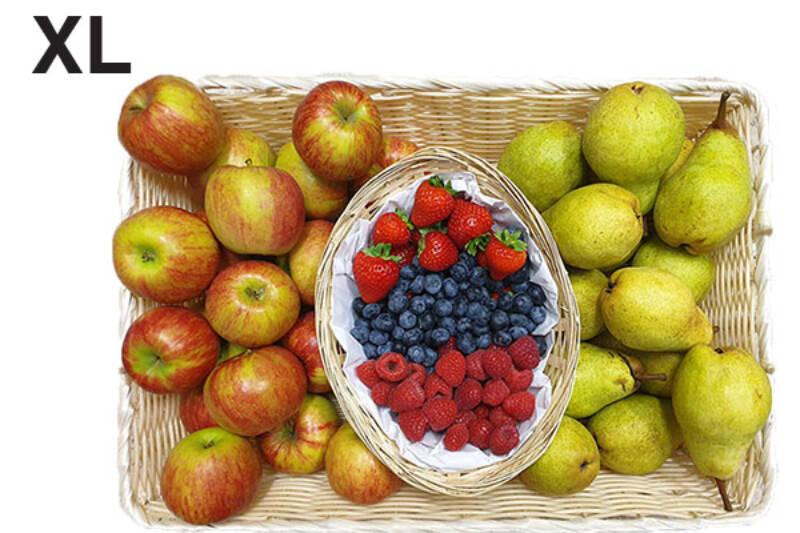 Fruchtkorb XL